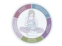 Daisy Birthing Active Birth Antenatal Classes