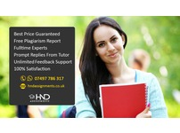 BTEC HND Assignment Help consultant/ project reports/ custom writing/ Essay   London