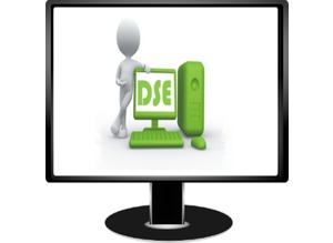 DSE Assessment Provide By Posture Group