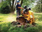 Get Beautiful Gardens With Tree Surgery In Guildford