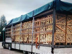 I am a supplier of Dry Birch Firewood from Russia. Dispatch by sea container to any point in England.