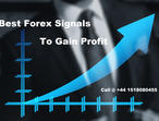 Experience Quality Service - Forex Signals