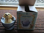Regency Fine Arts Boxed Bucket Puppy New