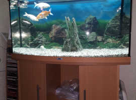 Juwels Fish Tank In Mexborough S64 On Freeads Classifieds