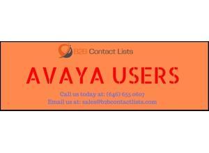 Avaya Network Technology Executives Mailing List & Email List