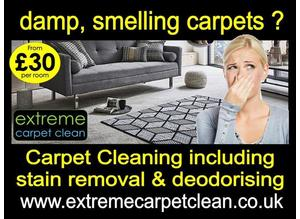 Damp, smelling Carpets - We clean - PROFESSIONALLY