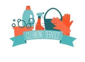 Cleaner Available Saltash