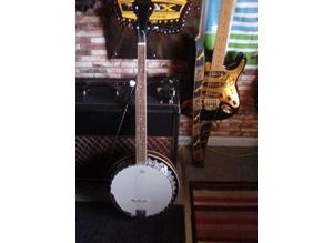 Full size banjo