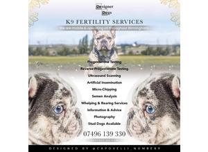 K9 fertility services