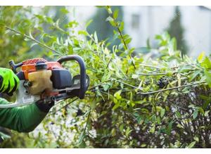 Sherlock's Tree and Countryside Services provide a professional, friendly service for all your tree and countryside requirements