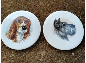 Dog Ceramic Coasters x 2