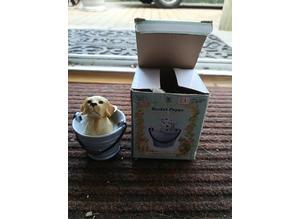 Regency Fine Arts Boxed Bucket Puppy New