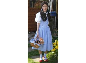 Dorothy wizard of oz small costume homemade + basket/wig &toy dog