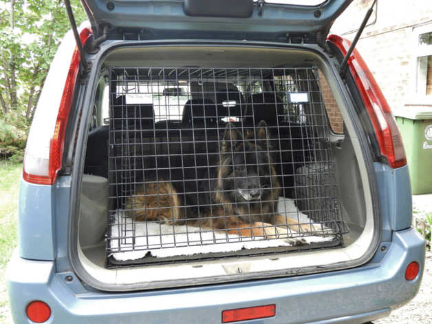 Nissan X Trail For Dogs >> Pet Carrier As New